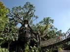 tarzan treehouse cheap disneyland vacation