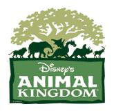 disneys animal kingdom theme park walt disney world